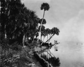 Indian River - Circa 1920